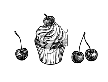 Cupcake with cherry. Ink sketch isolated on white background. Hand drawn vector illustration. Retro style.