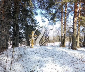 A commemorative Orthodox cross on a hill in the snow among the pines.