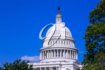 Ornate dome of the Capitol building at Congress in Washington DC in USA on a bright sunny summer day
