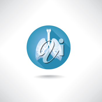 Lungs and bronchi icon. Human anatomy web buttons set.