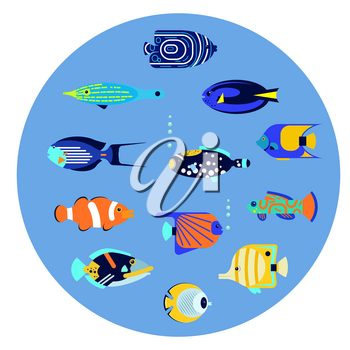 Vector flat illustration sea color tropical various aquarium fish icon.