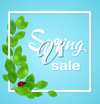 Spring blue background with green leaves and ladybird in white frame