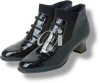 Royalty Free Photo of Dressy Ladie's Boots