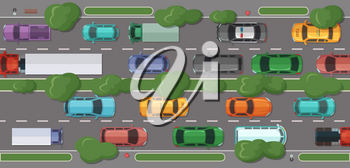 Vector highway with a lot of cars and vehicles with grass and trees dividing and on sidelines top view illustration
