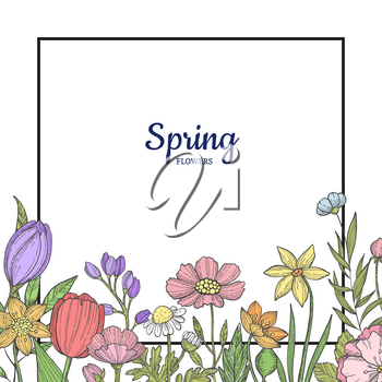 Vector hand drawn flowers background with place for text illustration. Colored spring flora banner
