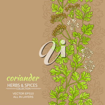 coriander plant vector pattern on color background