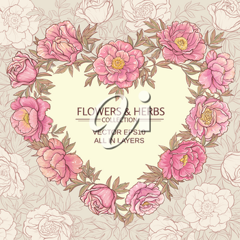 vector frame with pink peonies on color background