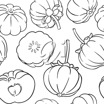 garcinia fruits vector pattern on white background
