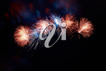 Beautiful fireworks on the black sky background