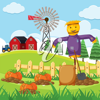 Farm scene with pumpkin patch illustration