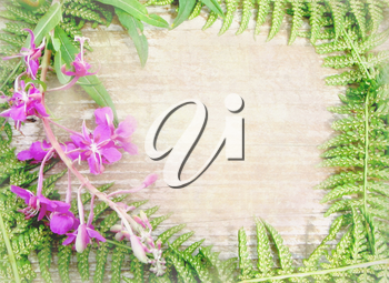 Floral background with wild flowers and herbs. Can used for invitation, announcement, greeting card. Wild wood border frame with plants as ferns leaves and branch flowers with framed wooden table.