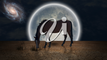 Surrealism. Horse grazes in arid land. Giant moon at the horizon.