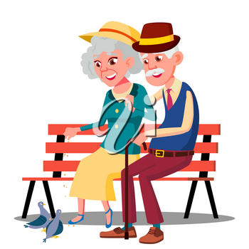 Senior Age Family Couple Sitting On A Bench And Talking Vector. Illustration