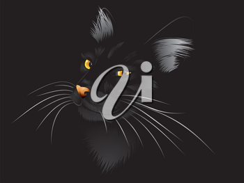 Cartoon cat with yellow eyes on black background.