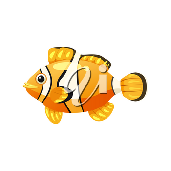 Tropical exotic clown fish, bright colorful coloring