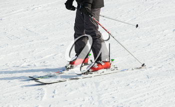 Male skier skiing in fresh snow on ski on a sunny winter day.