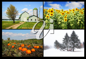 Collage of four pictures. one for each season, spring, summer, fall and winter